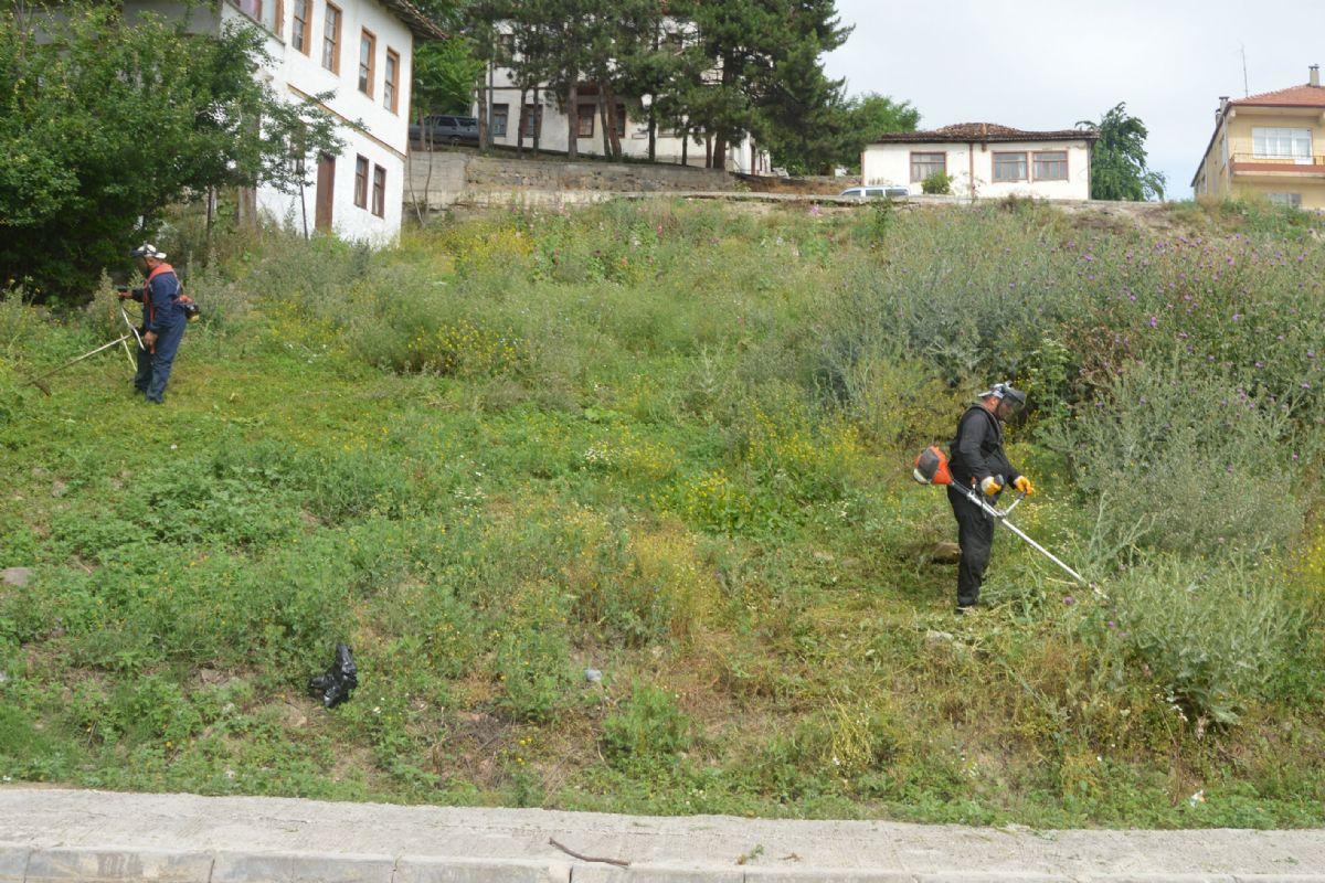 Havza Belediyesi Temizlik İşleri Müdürlüğü Ekipleri Merkez ve Çevre Mahallelerde Yabani Ot Temizliği ve Çim Biçme Çalışmalarını Sürdürüyor.