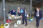 Havza Belediyesi 30 Bin Maske Dağıttı